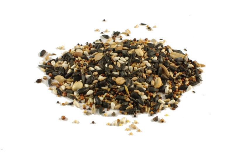 pokarm dla ptaków Tłusty Kąsek Semini z orzechami idealny dla sikorek i innych dzikich ptaków wiadro 5l