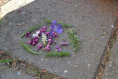 Te kwiatki tworzą małą układankę zrobioną przez przedszkolaka