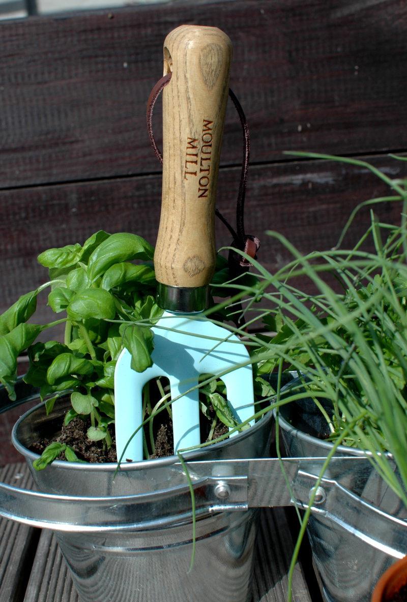 widełki ogrodnicze z ziołami