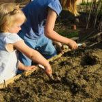 Grządka dla dzieci: wykopywanie dołków