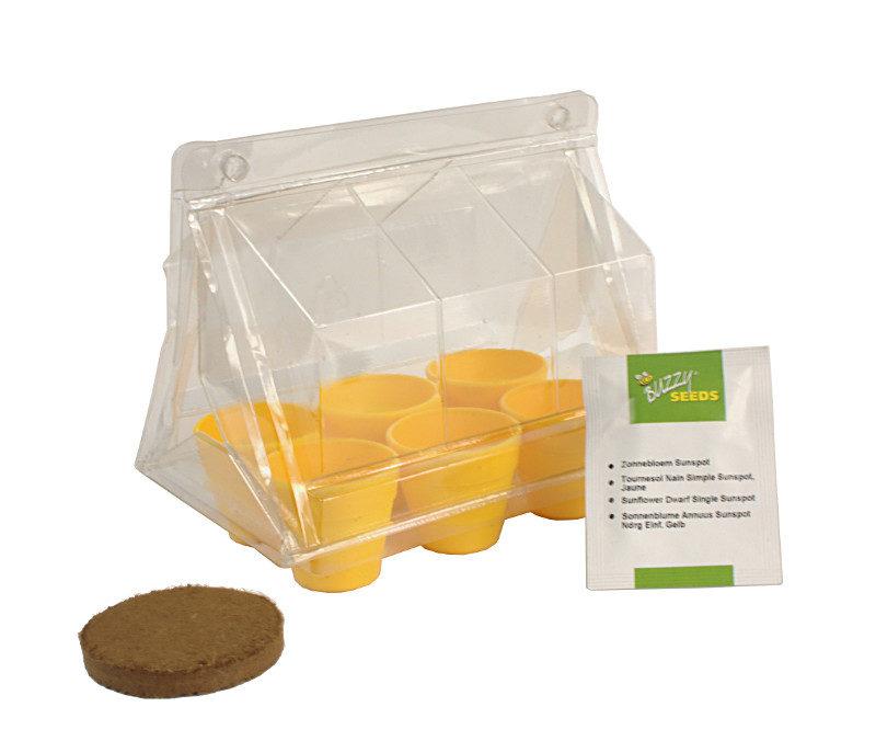 zestaw do uprawy słoneczników dla dzieci i dorosłych miniszklarenka, doniczki, sprasowane podłoże, nasiona