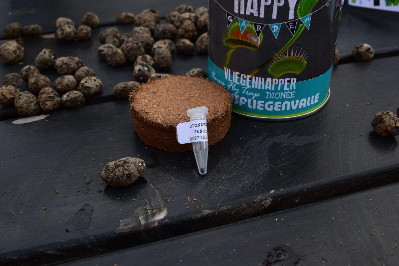 Składniki zestawu do uprawy muchołówki