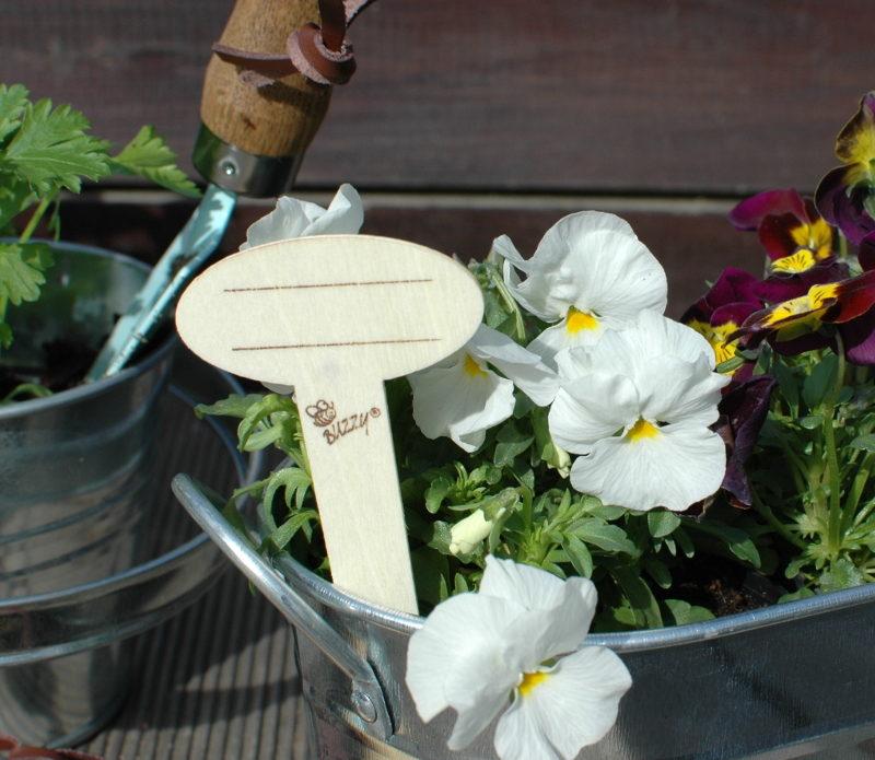 drewniana tabliczka do oznaczania roślin