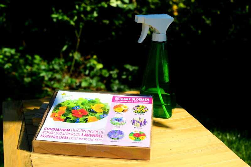 Zestaw do uprawy kwiatów jadalnych 1