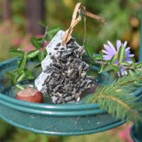 Choinka tłuszczowa ze słonecznikiem dla ptaków zimujących