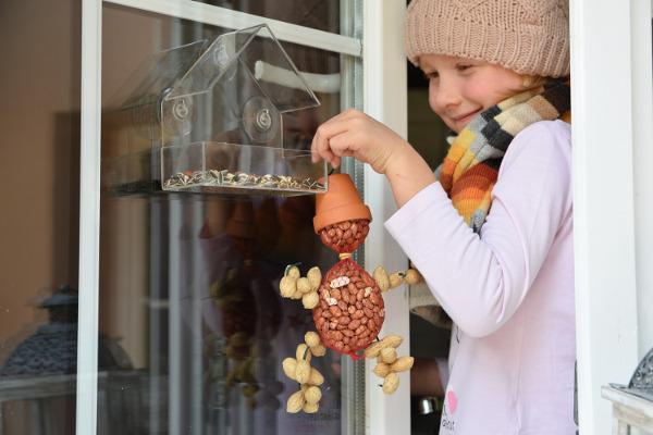 Ludzik z orzechów dla ptaków DIY na prezent 1