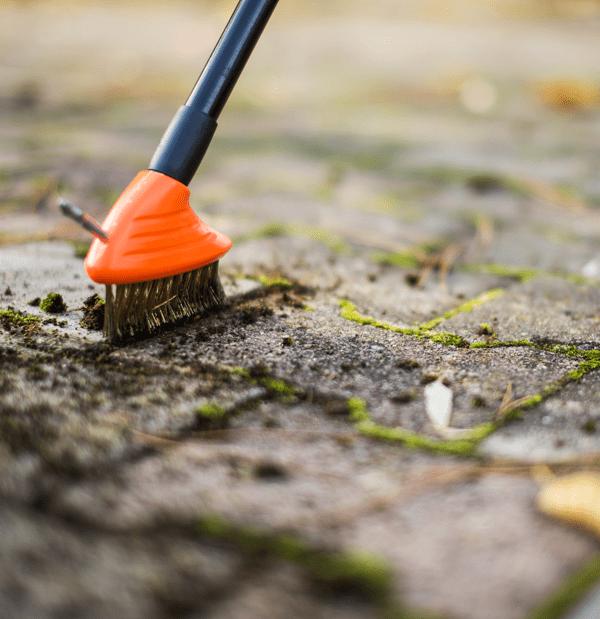 czyścik do mchu w chodniku