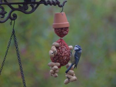 Ludzik z orzechów to coś i dla dzieci, i dla ptaków.