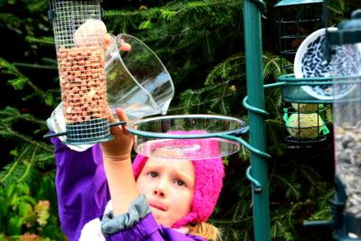 Woda dla ptaków - może ją nalać nawet dziecko.