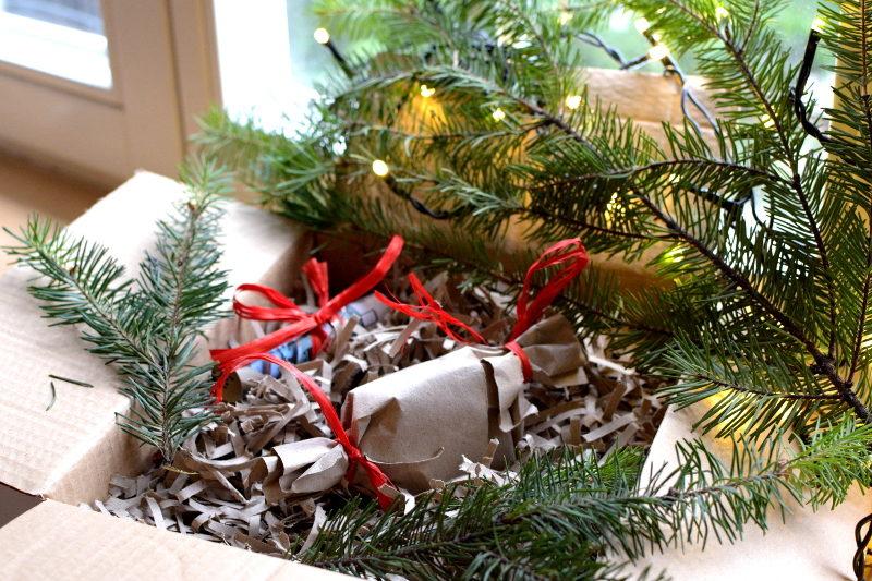czterolistna koniczynka zapakowana na prezent