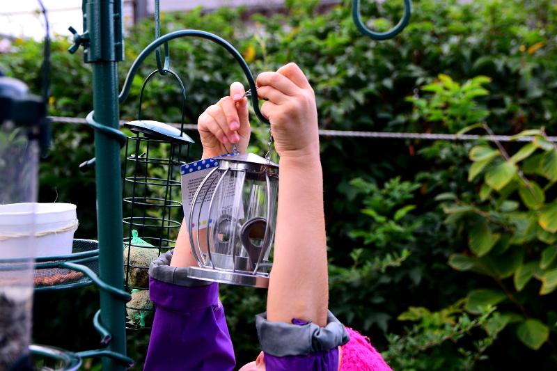 jak dokarmiać ptaki z dziećmi