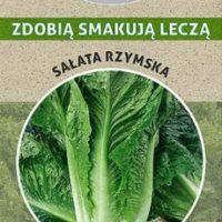 sałata rzymska nasiona naturalna zdrowa