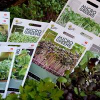Nasiona na mikroliście microgreens ready