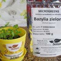 bazylia na mikroliście