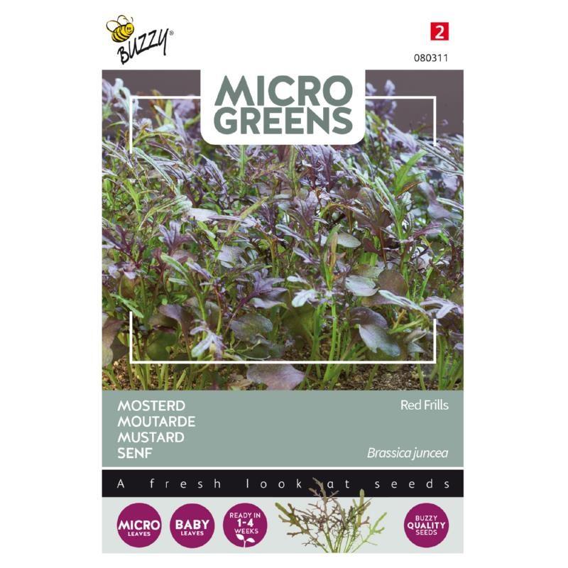 Nasiona gorczycy na mikroliście