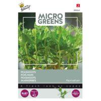 nasiona grochu na mikroliście
