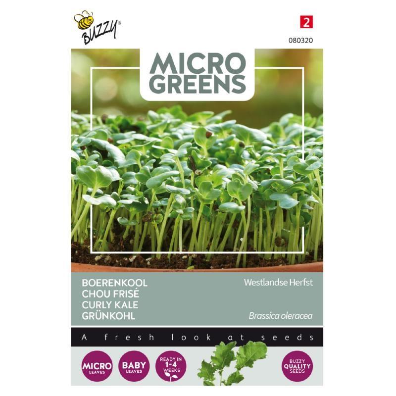 Nasiona jarmużu na mikroliście nasiona