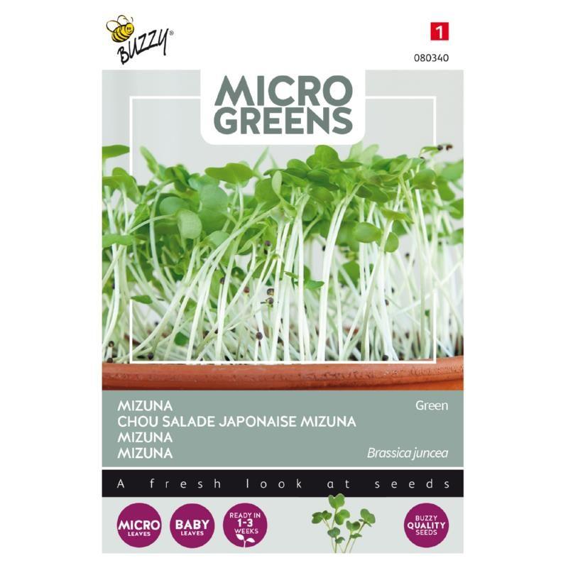 Nasiona mizuny na mikroliście