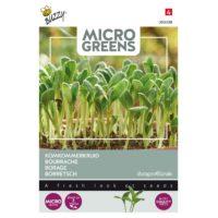 Nasiona ogórecznika na mikroliście