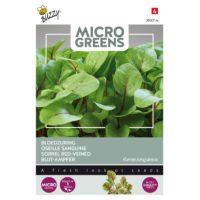 nasiona szczawiu na mikroliście