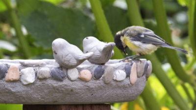 Poidełka dla ptaków ceramiczne i betonowe