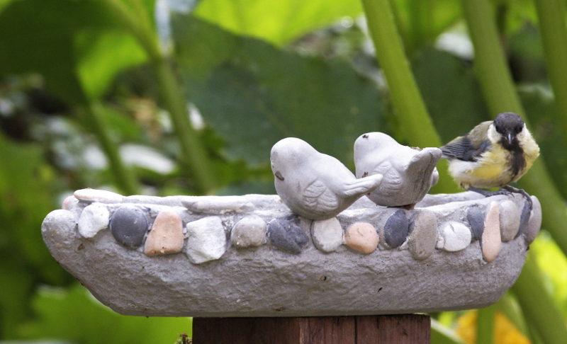 poidełko prawdziwe kamienne ptaki
