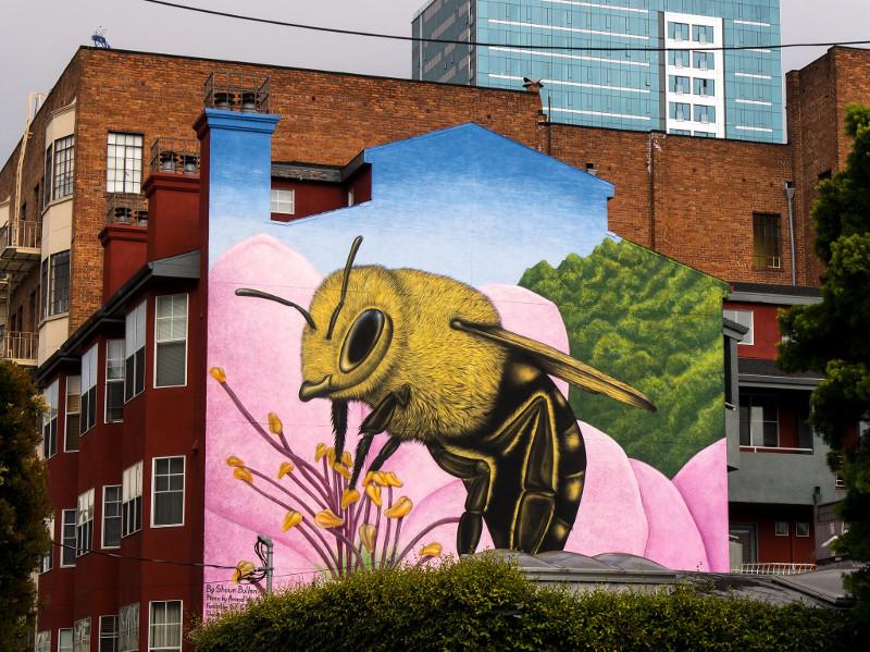 Mural z pszczołą, zdjęcie  Shawn Bullen