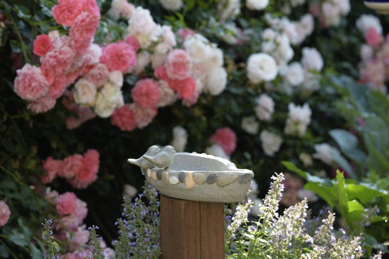 kamykowy staw i róże oświetlenie