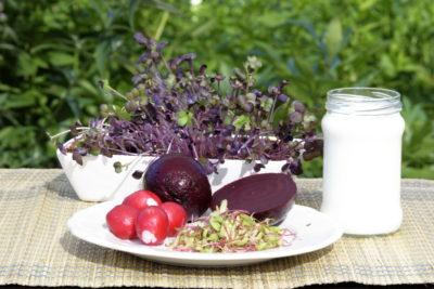Letnie potrawy z mikroliści - składniki
