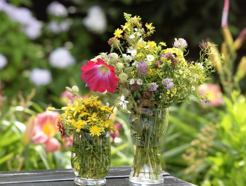 Bukiet kwiatów łąkowych