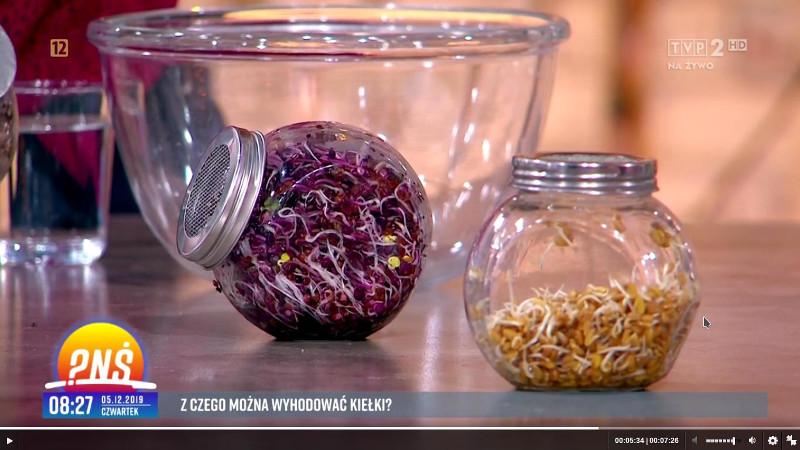 Rzodkiewka Red Purple