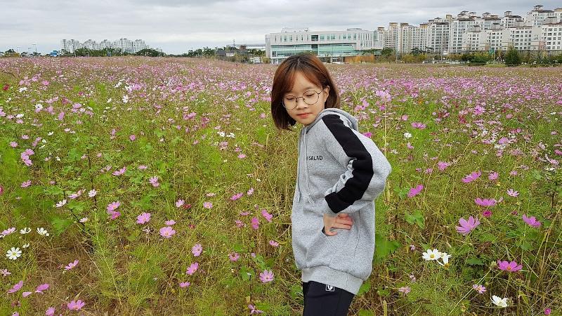 Łąka w mieście sprzyja spacerom