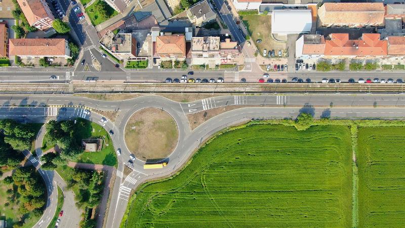 Łąka w mieście w zieleni publicznej 1