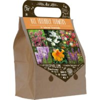 Kwiaty cebulowe dla pszczół