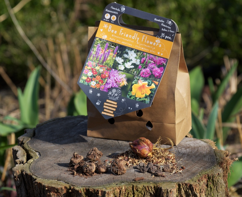 Cebule kwiatów dla pszczół