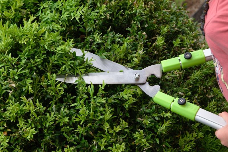 Nożyce do żywopłotu wydłużonymi rączkami 3