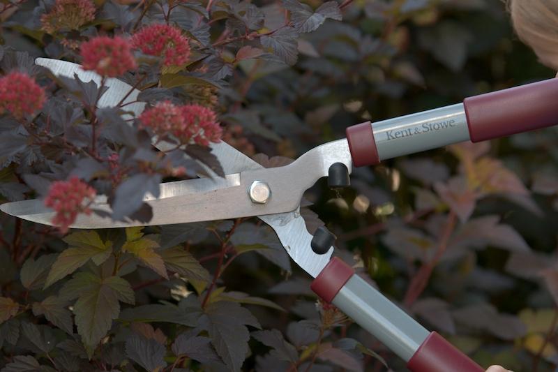 Nożyce ogrodnicze o długich uchwytach
