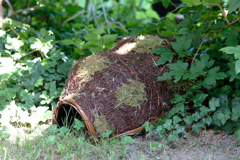 domek dla jeża wśród liści