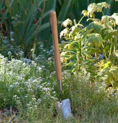Łopatka ogrodnicza z długim trzonkiem