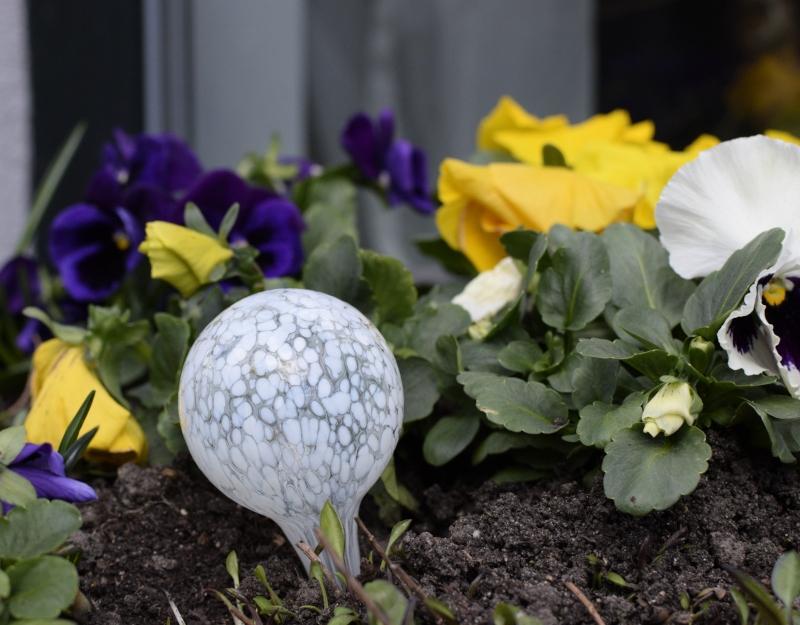 sposób na nawadnianie kwiatków