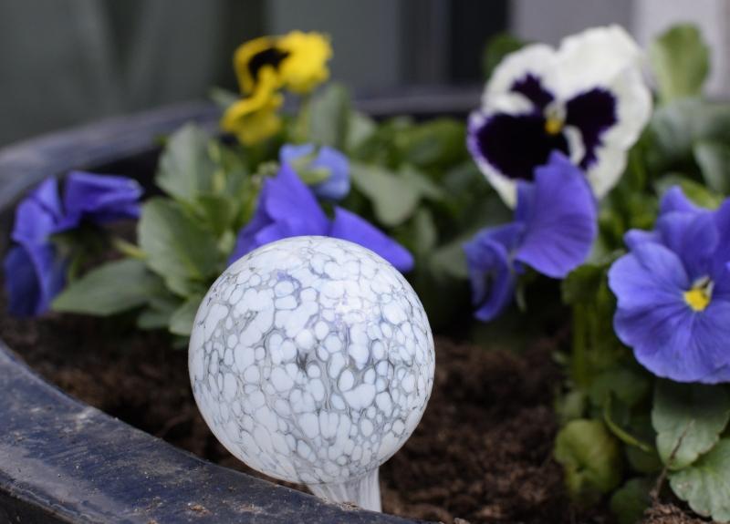 biała kula do nawadniania roślin