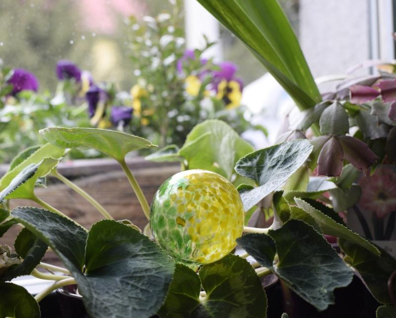 Jak podlewać kwiaty podczas upałów