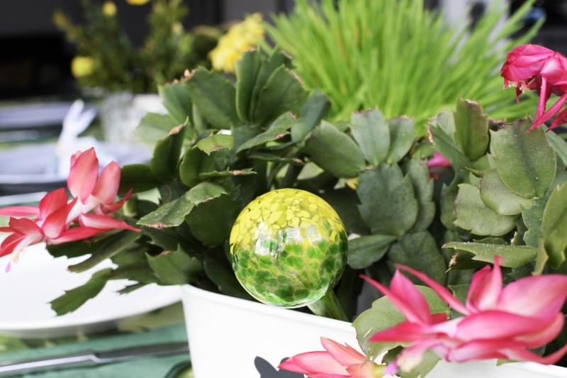szklany nawadniacz do kwiatów doniczkowych