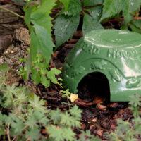 Domek dla żab
