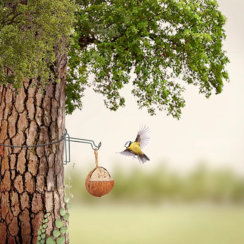 Hak do montażu na drzewie budek, karmników, poidełek, doniczek 2